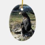 Sun Bear at the Zoo Double-Sided Oval Ceramic Christmas Ornament