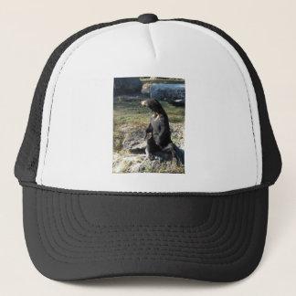 Sun Bear at the Zoo Trucker Hat