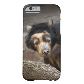 Sun Bear, iPhone 6, Barely There Barely There iPhone 6 Case