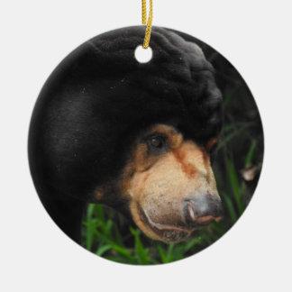 Sun Bear Ornament