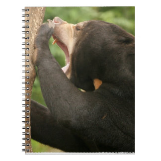 Sun Bear with Mouth Open Journal