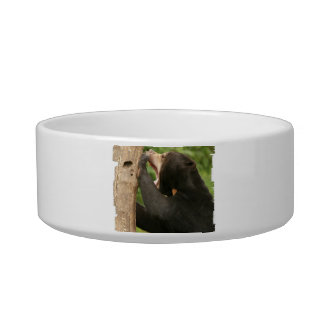 Sun Bear with Mouth Open Cat Bowls