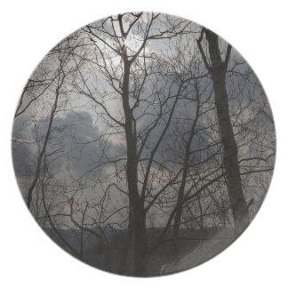 Sun behind a tree trunk dinner plates