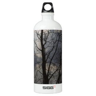 Sun behind a tree trunk water bottle