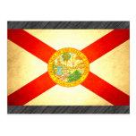 Sun besó la bandera de la Florida Postales