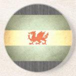 Sun besó la bandera de la Patagonia Posavasos Diseño