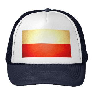 Sun besó la bandera de Polonia Gorros