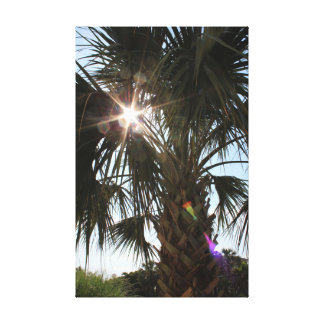 Sun Bows and Palm Trees Canvas Print