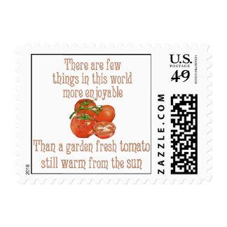 Sun calentó los tomates sellos
