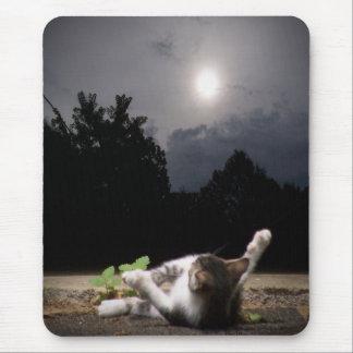 Sun Catcher Mouse Pad