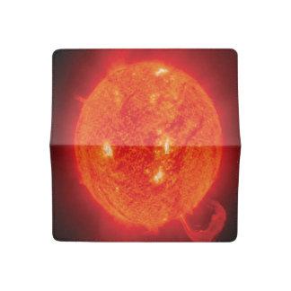 Sun Checkbook Cover