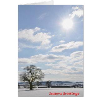 'Sun' Christmas Card