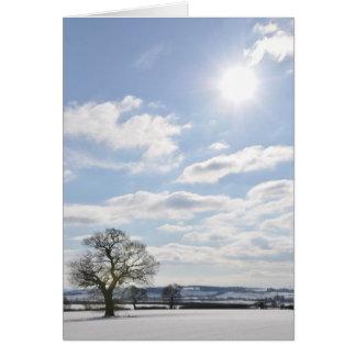 'Sun' Christmas Notecard