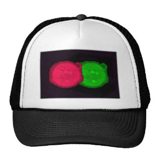 Sun Collage Mesh Hat