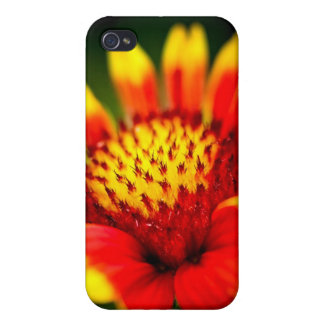 sun collector iPhone 4 covers
