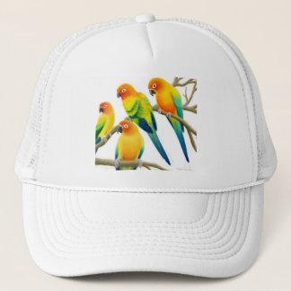 Sun Conure Parrots Hat