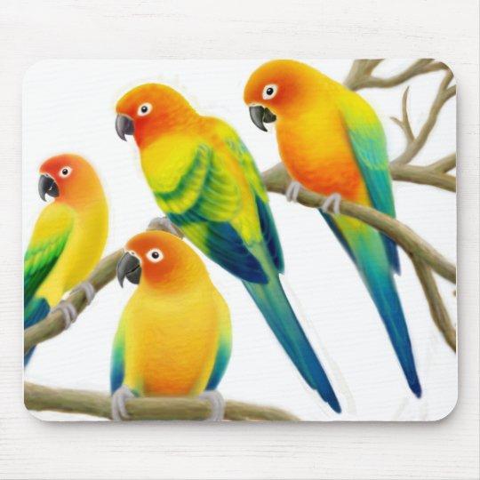 Sun Conure Parrots Mousepad