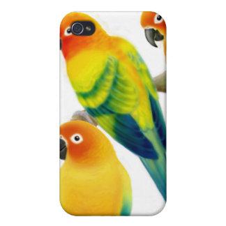 Sun Conure Parrots Speck Case