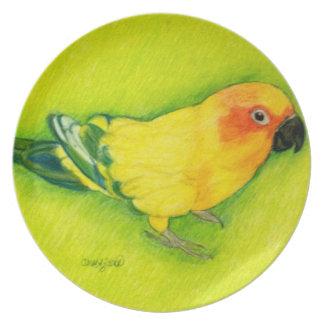 Sun Conure Plate Original artwork by Carol Zeock