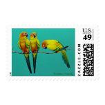 Sun Conure Stamp