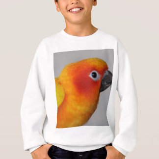 Sun Conure Sweatshirt