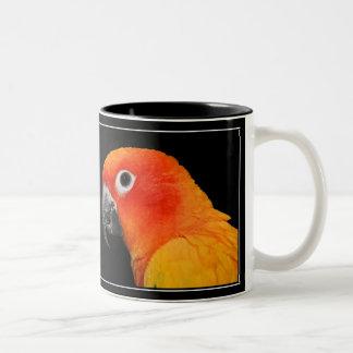 Sun Conure Two-Tone Coffee Mug