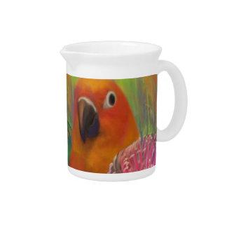 Sun Conures Parrots Beverage Pitcher