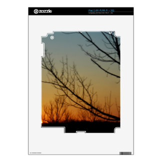Sun crest forest decal for iPad 2