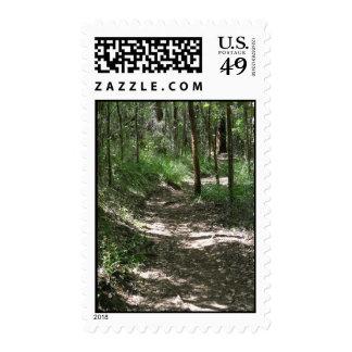 Sun-Dappled Bush Pathway In Porongurup Postage Stamp