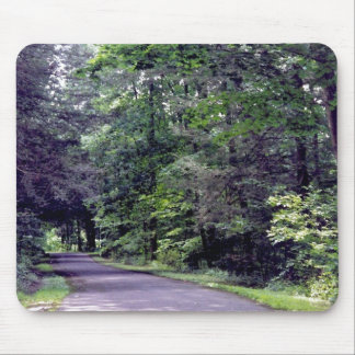 Sun-dappled Forest  - mousepad
