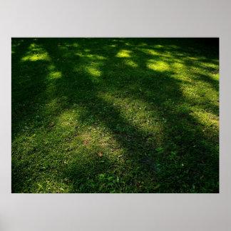 Sun Dappled Lawn Posters