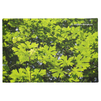 Sun-Dappled Leaves in the Forest Doormat