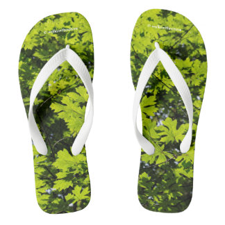 Sun-Dappled Leaves in the Forest Flip Flops