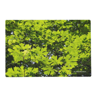 Sun-Dappled Leaves in the Forest Placemat