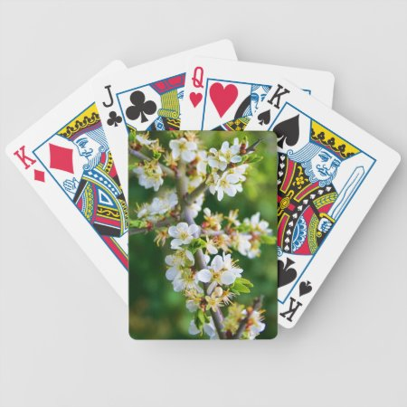 Sun-Dappled Spring Hawthorn Bicycle Playing Cards