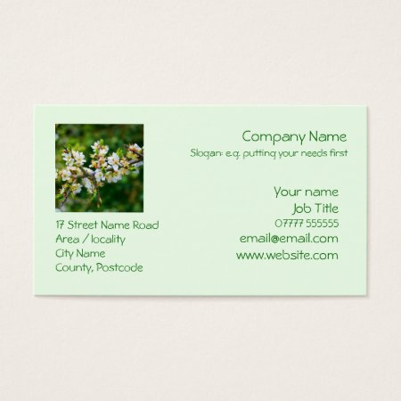 Sun-Dappled Spring Hawthorn Business Card