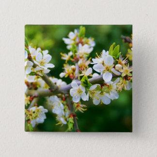 Sun-Dappled Spring Hawthorn Button