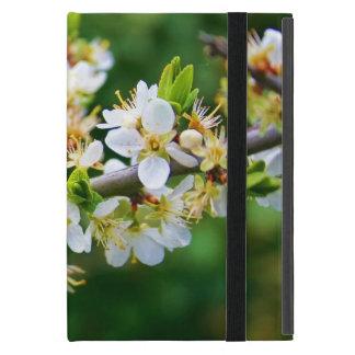 Sun-Dappled Spring Hawthorn Cases For iPad Mini
