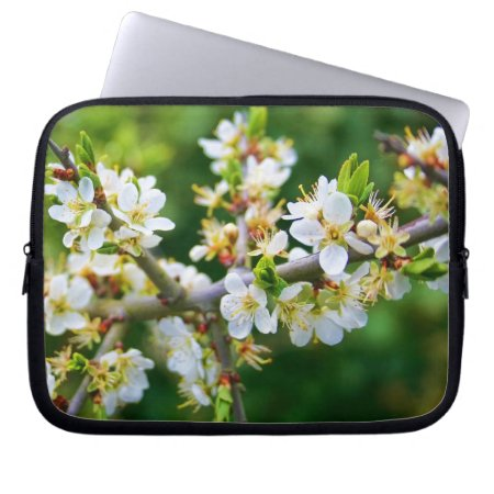 Sun-Dappled Spring Hawthorn Laptop Computer Sleeves