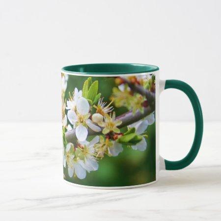 Sun-Dappled Spring Hawthorn Mug