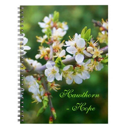 Sun-Dappled Spring Hawthorn Notebook