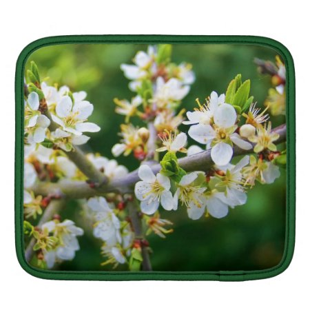 Sun-Dappled Spring Hawthorn Sleeve For iPads