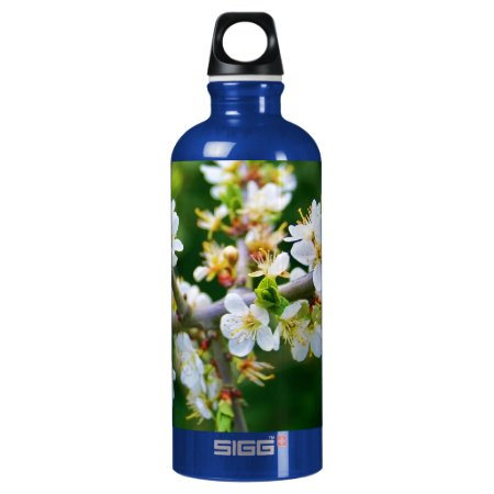 Sun-Dappled Spring Hawthorn Water Bottle