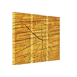 Sun de la madera impresión de lienzo