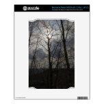 Sun detrás de un tronco de árbol calcomanías para NOOK