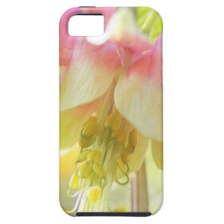 Sun Drenched Columbine Flower iPhone SE/5/5s Case
