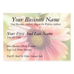 Sun Drenched Gaillardia Flowers Business Cards
