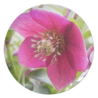 Sun Drenched Hellebore Flower Melamine Plate