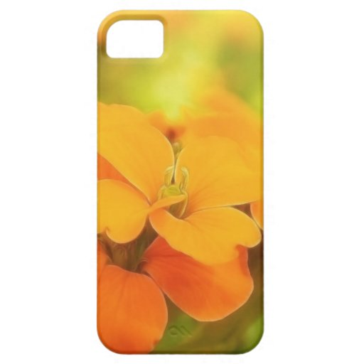 Sun Drenched Siberian Wallflower iPhone 5 Case