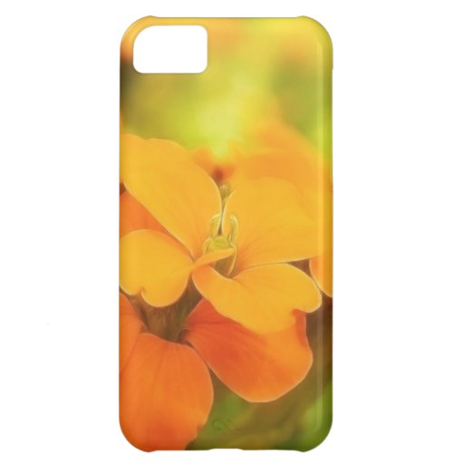 Sun Drenched Siberian Wallflower Case For iPhone 5C
